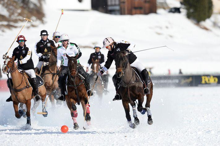чемпионат мира по снежному поло