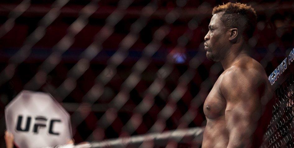 UFC бой нганну