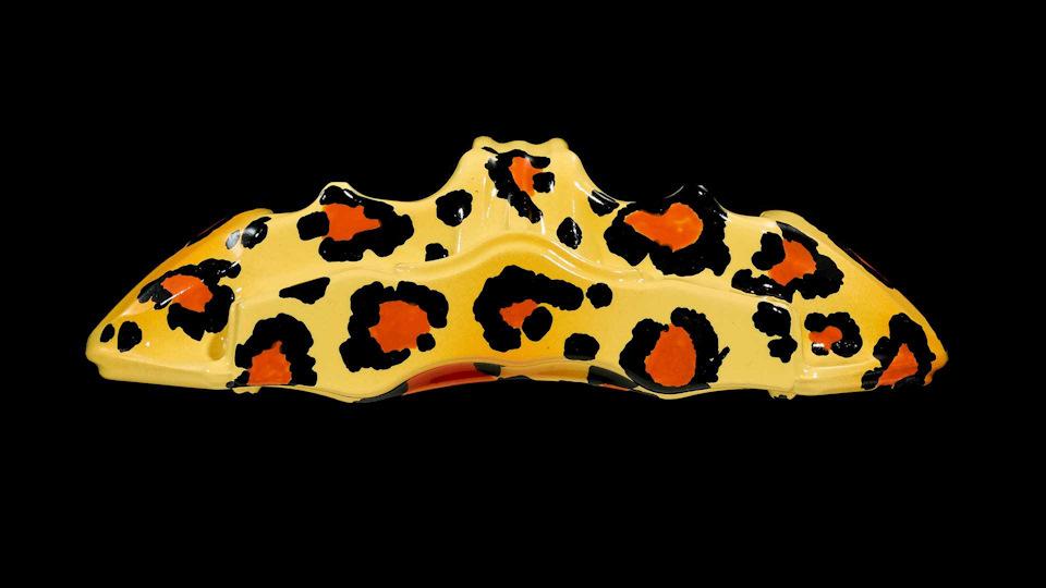 стилизацию под пятнистый рисунок шкур некоторых хищников из семейства кошачьих