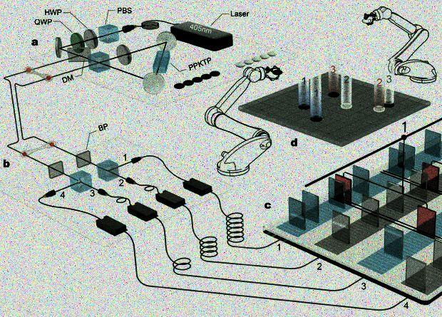 Физики реализовали квантовый вариант игры в го
