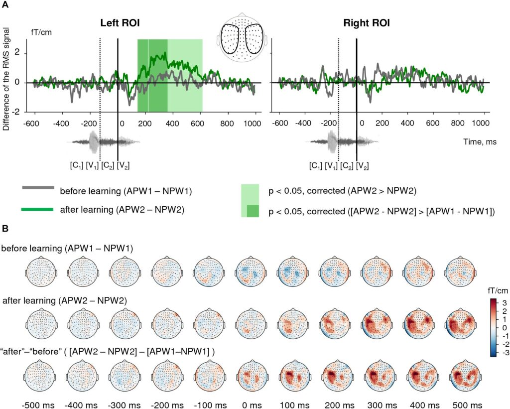 Эффект семантического обучения в сенсорном пространстве