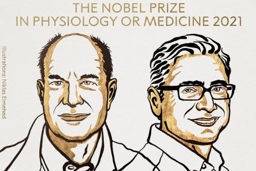 Нобелевскую премию по физиологии